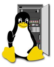 Linux and Windows Servers